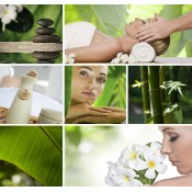 Ayurveda & Spa Tours (4)
