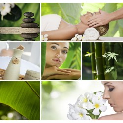 Ayurveda & Spa Tours