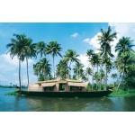 Kerala Backwater & Hill Station Tour 4N/5D