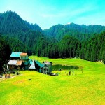 Best of Himachal Tour 10N/11D