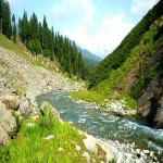Angling Tour In Kashmir 6N/7D