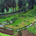 Bangalore with Ooty and Coorg Hills 5N/6D