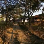 Memorable Guwahati 10N/11D (2N Guwahati, 4N Shillong, 2N Nameri, 2N Kaziranga)