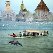 Odisha (11)