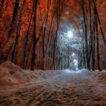 Amazing in Ukraine 4N/5D
