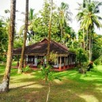 Tour Of Beautiful Kerala 3N/4D