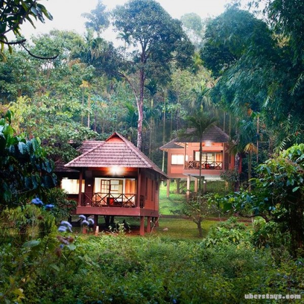 Wayanad Tour From Cochin 2N/3D