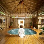 Ananda-In The Himalayas Spa Tour 2N/3D