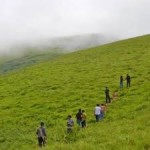 Trek to Mullayanagiri 1N/2D