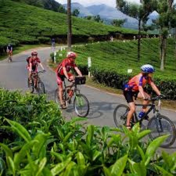 Camping And Cycling Tour In Wayanad 1N/2D