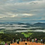 Coorg Wildlife Photography Tour 2N/3D