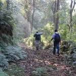 Coorg - Tadiandamol Trek and Adventure Escape 1N/2D