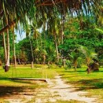 Jungle Resort Amba Leisure Stay And Safari 2N/3D